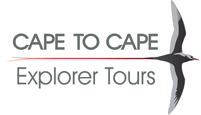Cape to Cape Explorers