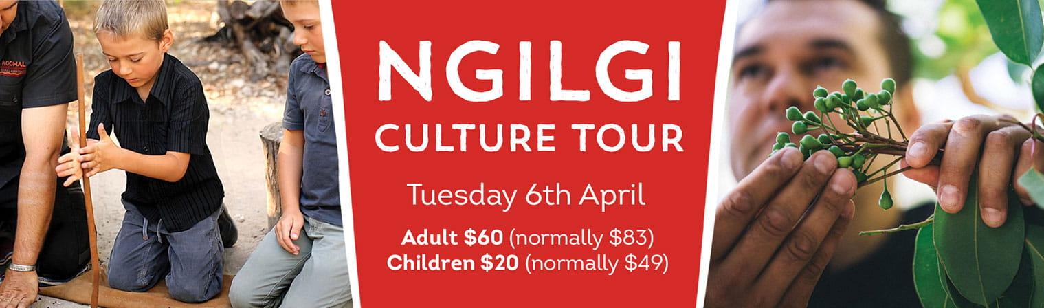 Ngilgi Cultural Tour School Holiday Dates